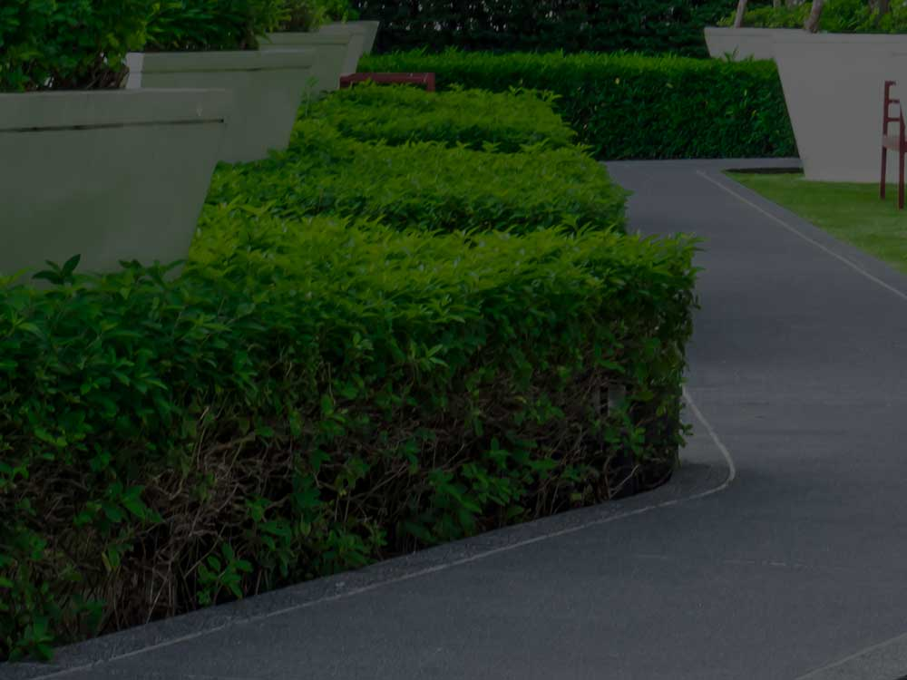 Bridgewater Commercial Landscaping