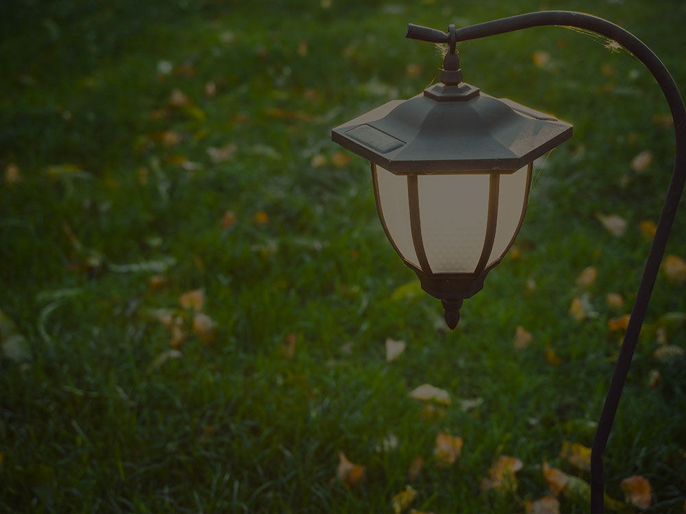 Readington Low Voltage Landscape Lighting